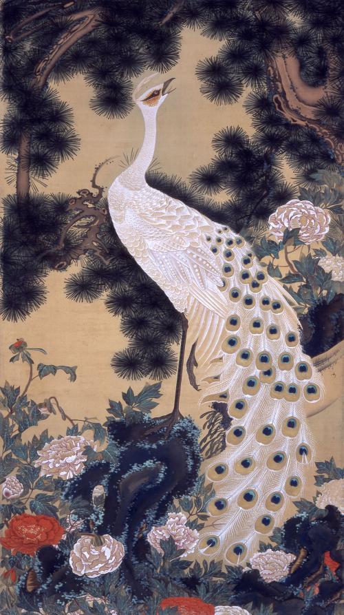 綴織壁飾原画_老松孔雀図模写